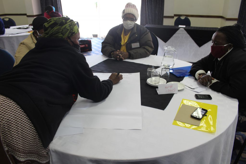 "Training of Paralegals under the UNDEF Project titled ""Enhancing Women's Political Participation in Eswatini"" on the 22nd June 2020"